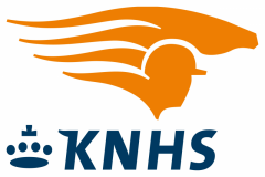 3-KNHS